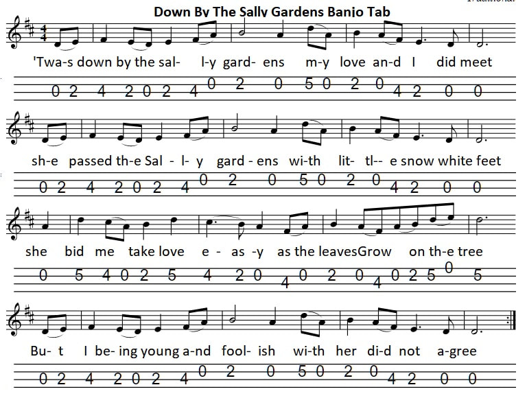 down by the sally gardens tenor banjo tab